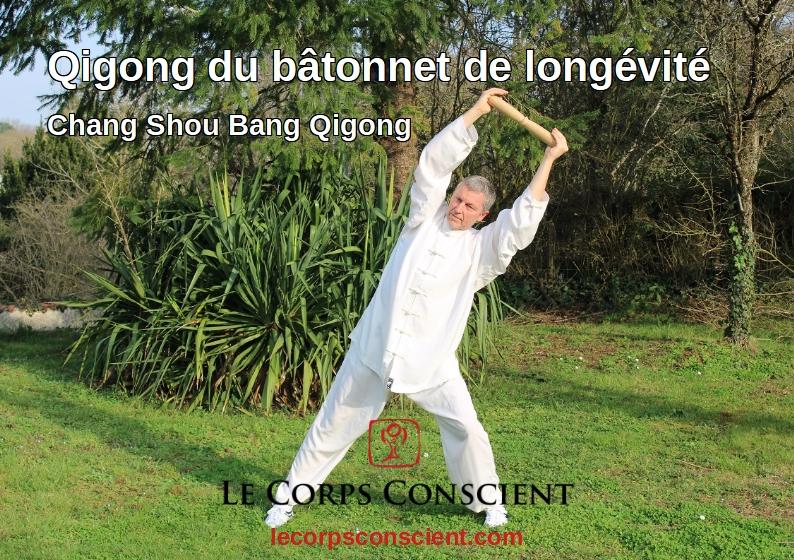 Vidéo sur le Qigong du bâtonnet de longévité